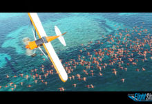 Photo of Microsoft Flight Simulator 2020